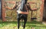 133 Pack Saddle (3)
