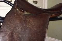 Lot 571 to 575 - Saddles (5)