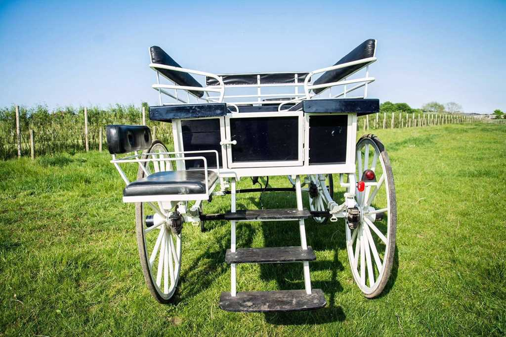 2017-06-28 North of England Carriage Sale – Carriages & Vehicles