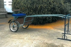Lot 402 - Exercise Buggy