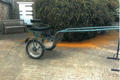 Lot 403 - Exercise Buggy