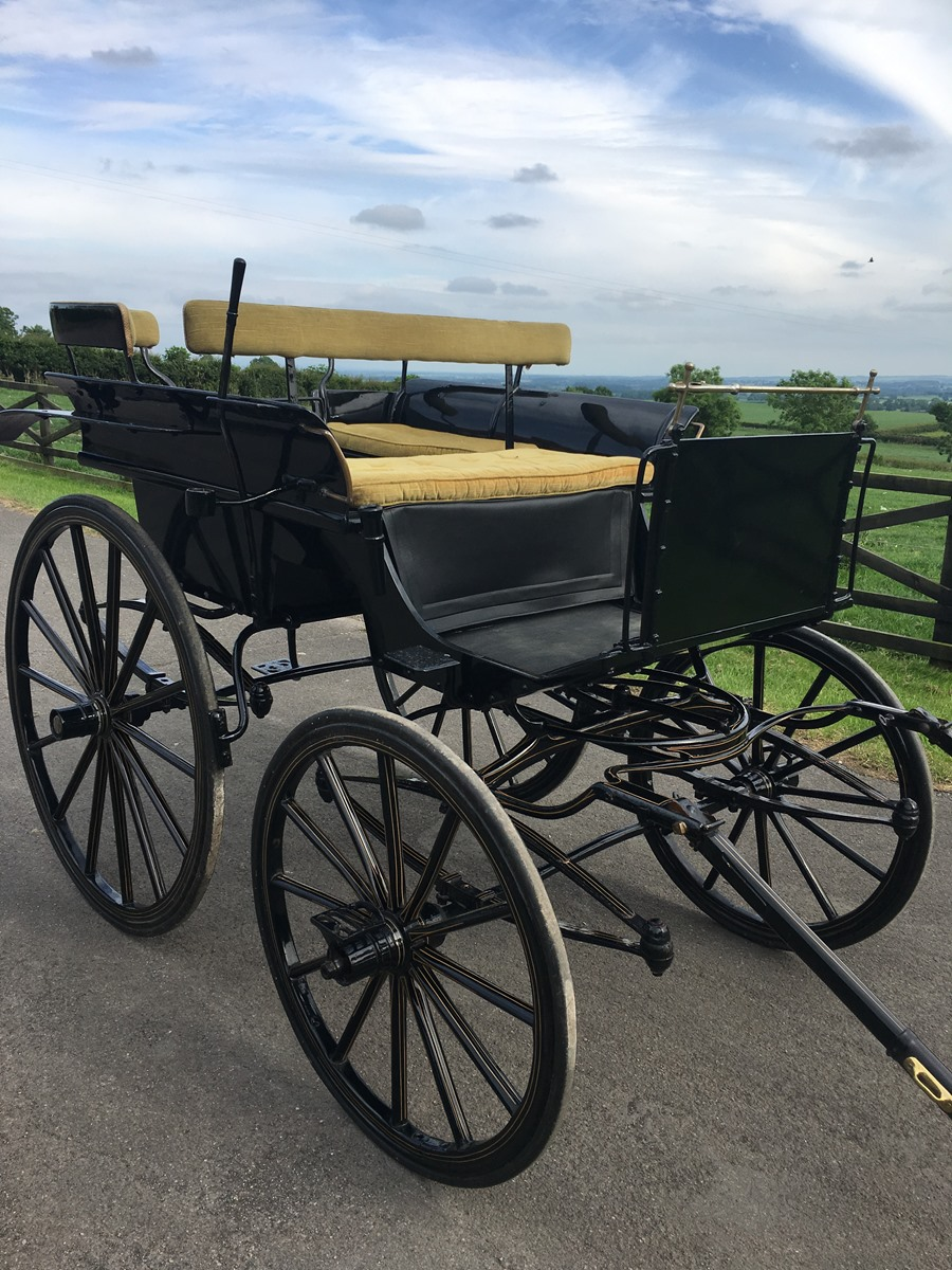 SALE REPORT – The 3rd North of England Carriage Sale | Thimbleby