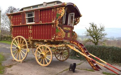 CARRIAGES – End of Year Sale Review 2019