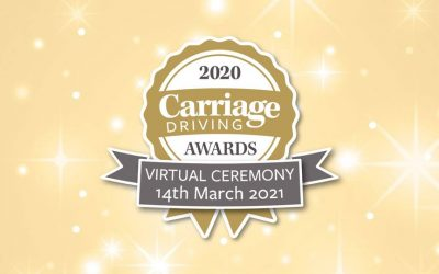 Carriage Driving Awards